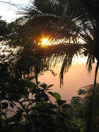Samasati Retreat & Rainforest Sanctuary: Sunrise (from the restaurant deck)