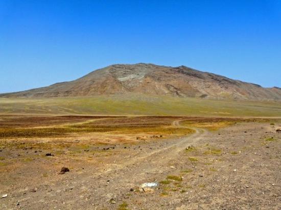 desert, Espargos