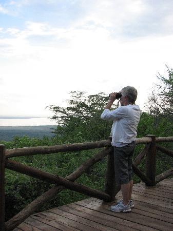 Kirurumu Manyara Lodge: Checking out birdlife