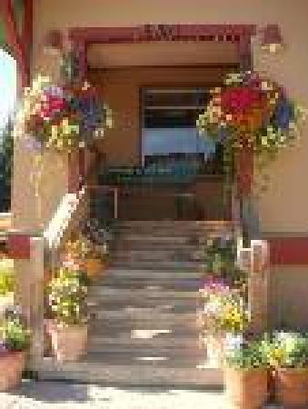 Donita's Cantina: We are so proud of our flowers
