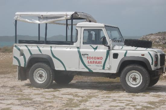 South Coast Horizons Jeep Safari Eco Tour: The tour jeep