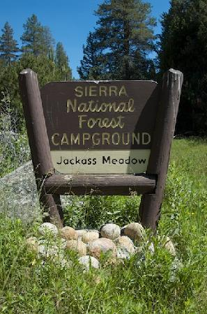 Jackass Meadow Campground: The sign