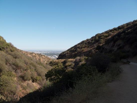 Los Angeles, CA: IMG_2791