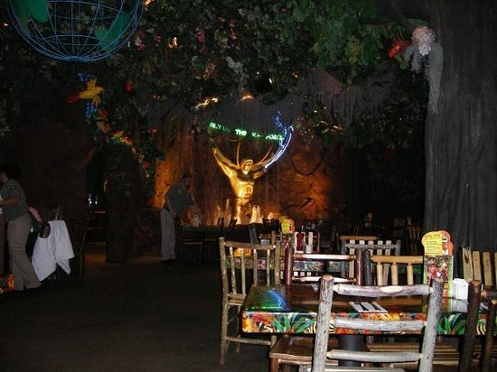 Rainforest Cafe Locations Ma