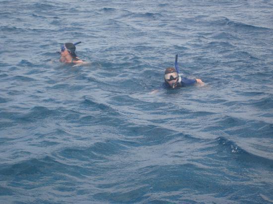 Kihei, HI: in the water