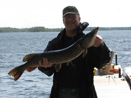 Big Lake Wilderness Lodge: 13.5 LBS. NORTHERN OFF DOCK
