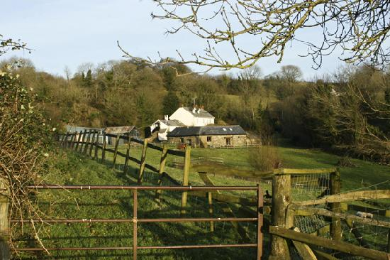 North Wheddon Farm Picture