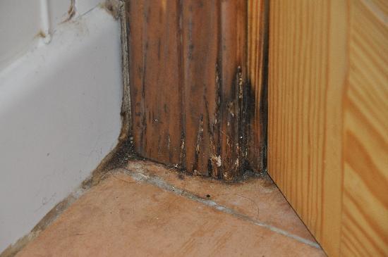 Las Brisas Apartments : Hier weicht das Holz auf....
