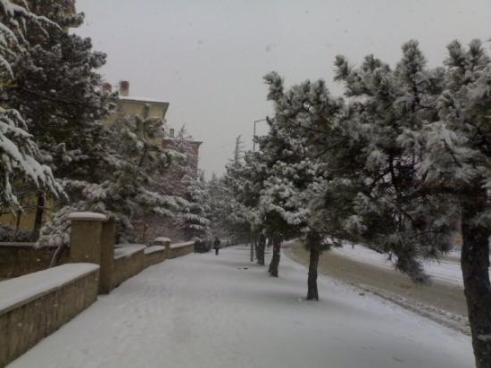 Eskişehirde 2008 kış