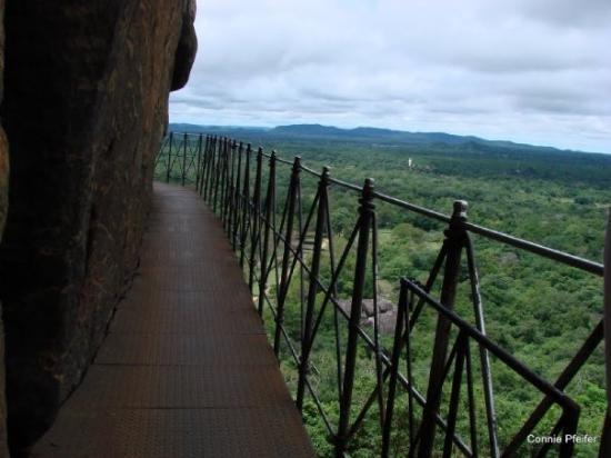 Bentota, Sri Lanka: nein, ich hab doch keine höhenangst:(