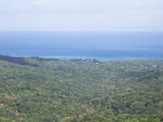 Jamaica Grande Beach : Here is a view of the sea from on the very top of the mountain.