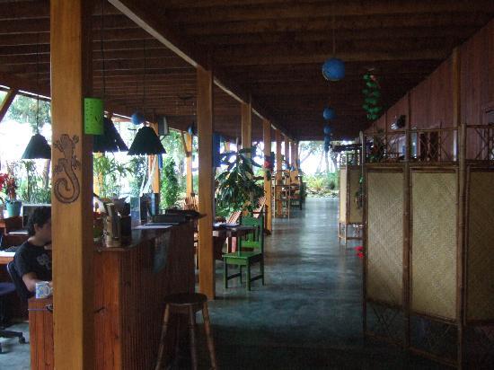 Hotel Banana Azul: Reception area
