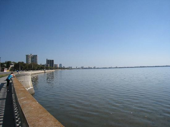 Bayshore Boulevard: Bayshore