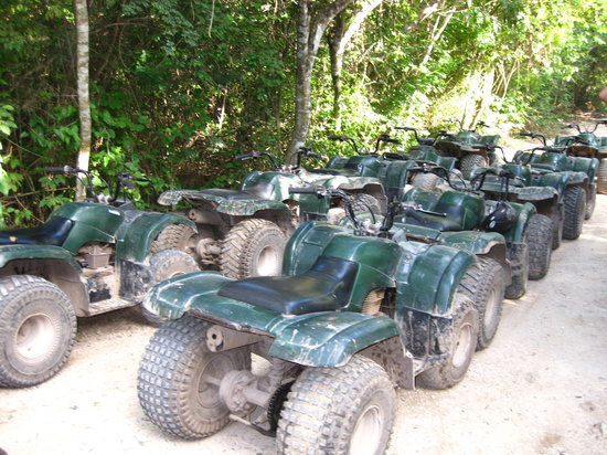 ATV Explorer Jungle Tour : ATVs