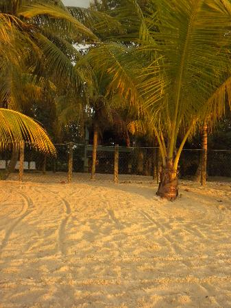 Nirvana on the Beach: Verandah Suites from the beach