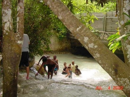 thief river falls big and beautiful singles Falls-cinema.