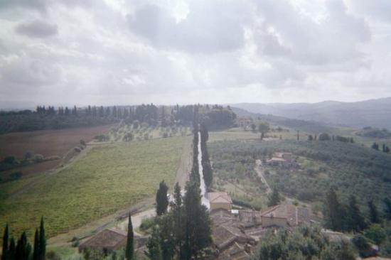 Bicycle Tuscany : View from tower showing drive from castle