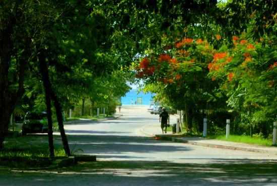 Andre Ha Caribbean Suites: Entrance to the Beach