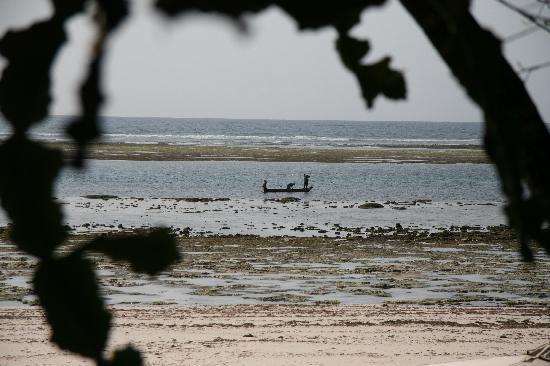 """The Sands At Chale Island: """"Meerblick"""" aus dem Zimmer bei Ebbe"""