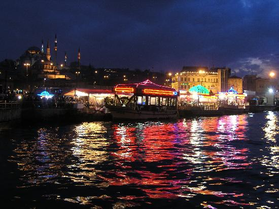 Witt Istanbul Suites: Fish Sandwich Boats near Galata Bridge