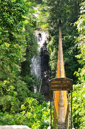Quepos, Costa Rica: Hanging Bridge above waterfall