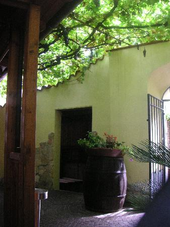 Cori, Italy: Just inside the gate, under the grapevine pergola