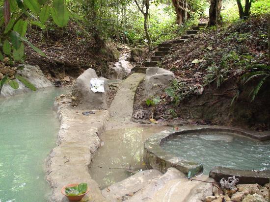 Jasmine Spa and Wellness: Pool area