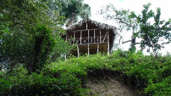 Jasmine Spa and Wellness: One of the huts