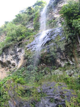 Maracas Falls : Falls