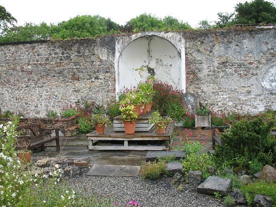 Enniscoe House: A random shot from the garden