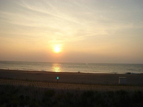 เกาะเฟนวิก, เดลาแวร์: The coastline of Fenwick Island, DE...isn't it gorgeoso? This was the view from our apartment!