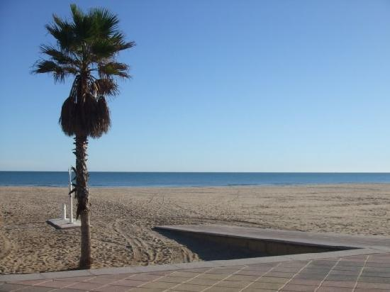 Hotel Gandia Palace: the beach