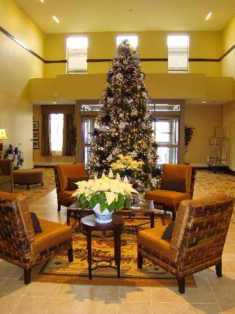 Best Western Plus University Park Inn & Suites: loved the christmas tree