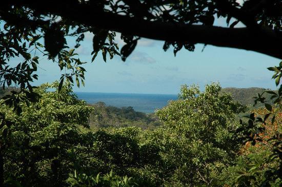 Las Mananitas: Vue de notre lit