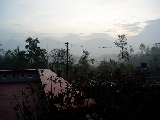 Olives Homestay: La vue depuis le balcon de la chambre