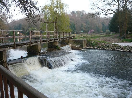 Le Moulin de Bray: Alimentation de l'étang a truites