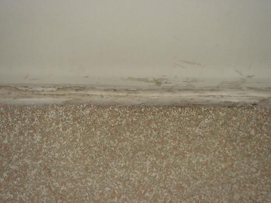 Pacific Inn Santa Cruz: Mold on bathroom floor