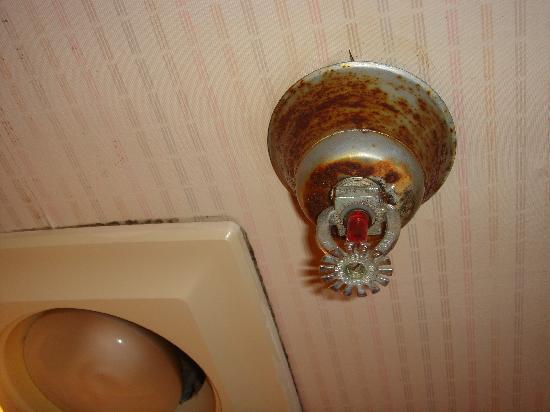 باسيفيك إن سانتا كروز: Rusty fire extinguisher- again safety hazard