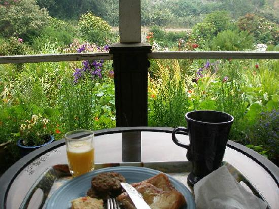 Howard Creek Ranch: Breakfast on the veranda
