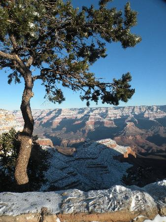 Maswik Lodge: Winter morning on Grand Canyon South Rim