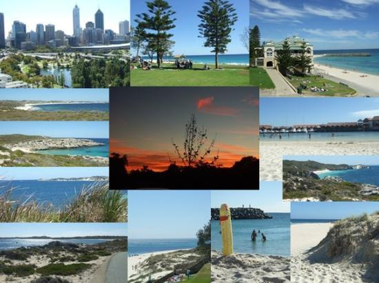 Perth - Kings Park, Cambridge, Cottesloe, Rottnest Island, Kinross, Trigg