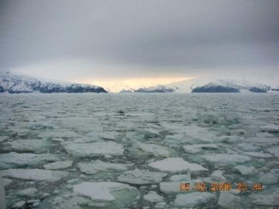 Wyspa Rossa: Pack ice in antarctica