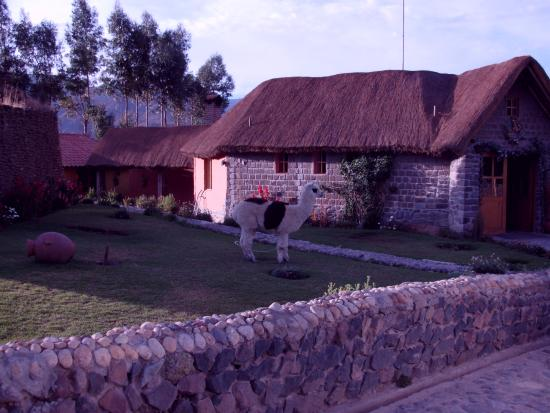 Photo of La Casa De Mama Yacchi Colca Canyon