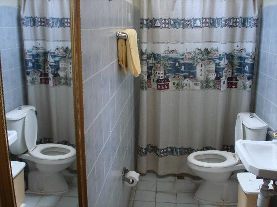 Weygoss Guest House: Bathroom of the double room