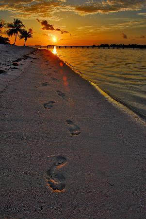 Little Cayman: Foot prints in time
