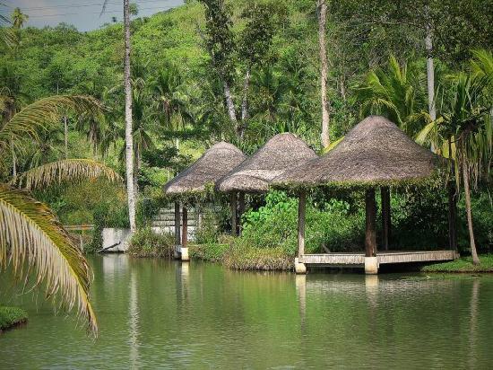 Rafael Farm: huts