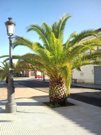 Isla Cristina, Espanha: La Redondela