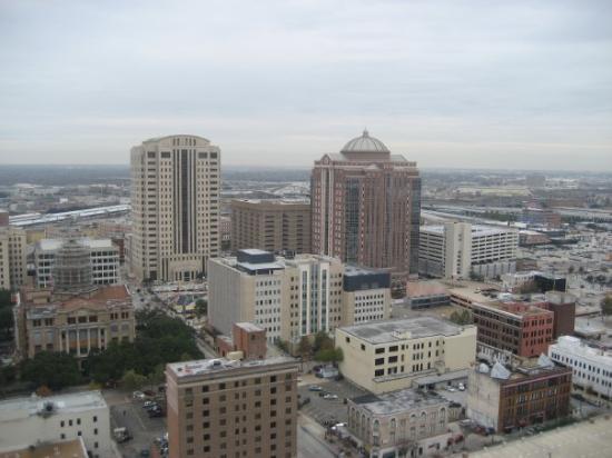 Hotels Near Hermann Park Houston