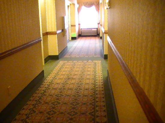 Fairfield Inn & Suites Tucson North/Oro Valley: hallway