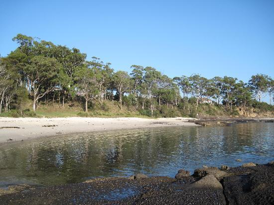 Huskisson Bayside Resort: The closest beach to the Bayside Motel - stunning!